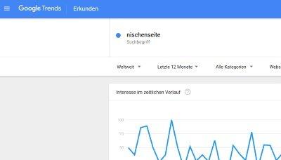 Nischenseite: Google Trends für Nischenseiten