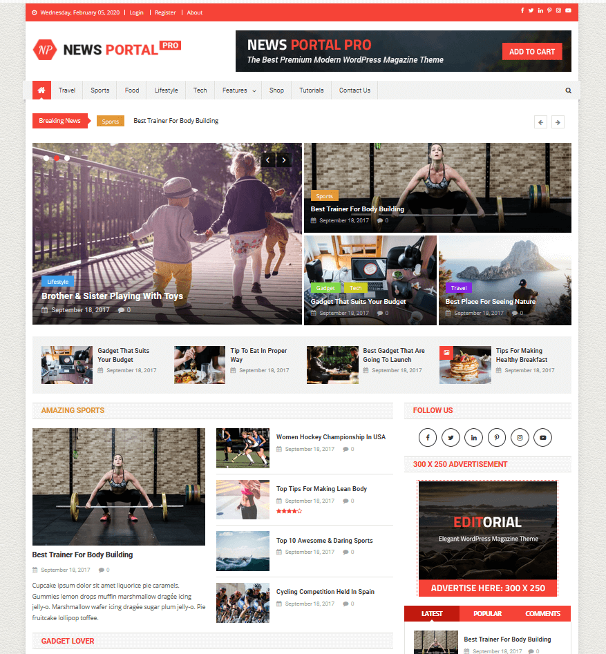 NewsPortal - Magazin Theme
