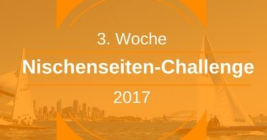 Nischenseiten-Aufbau Teil 2 - NSC 2017