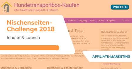 Nischenseiten-Challenge 2018 - Woche 4 - Inhalte & Launch