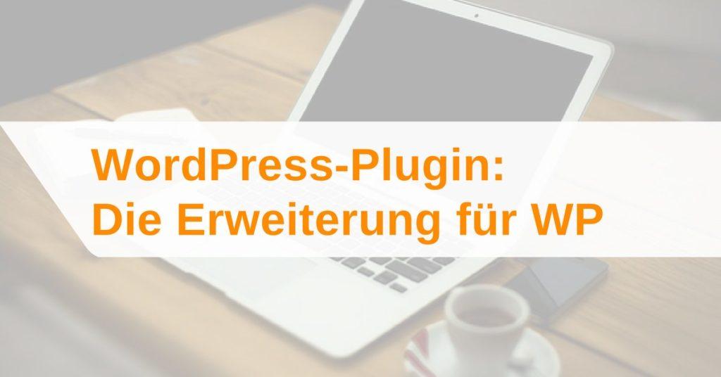 WordPress-Plugin: Was ist ein Plugin und wie wird es installiert?